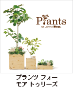 オリジナル商品 - Prants for more Trees